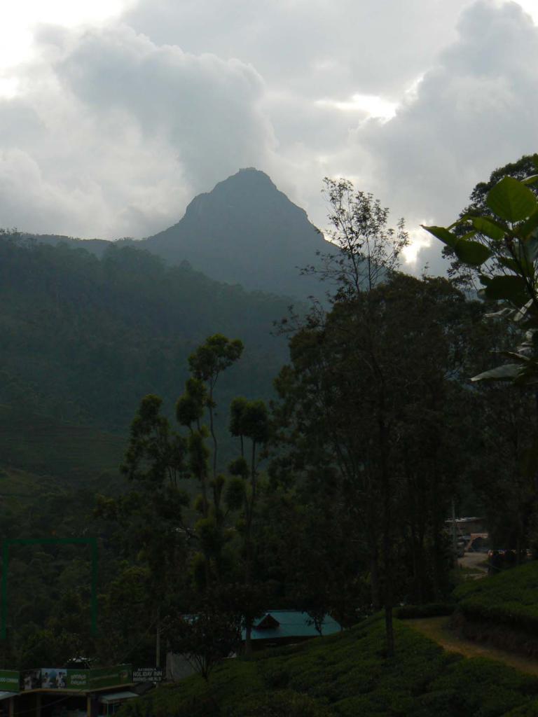 Sri - 06