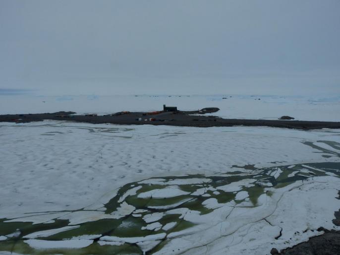 La Banquise le 11 janvier. Que du blanc, la mer est loin.