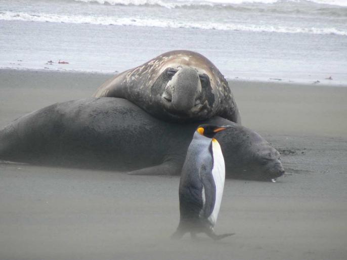 sieste à la plage